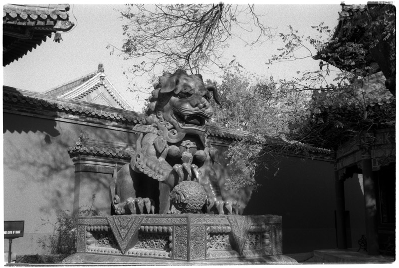 china/2001/beijing_lama_temple_dragon_bw