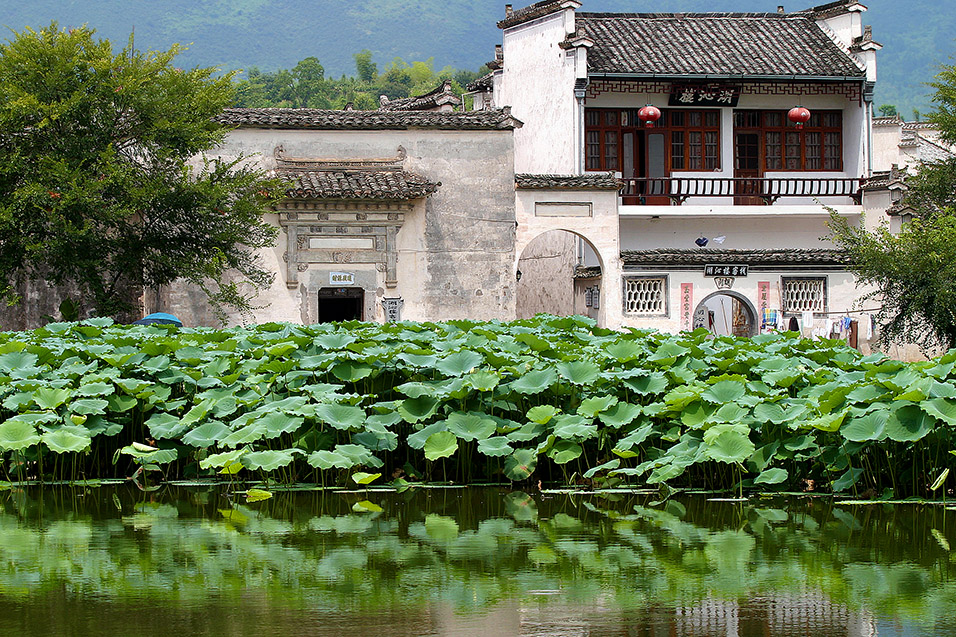 china/2006/hongcun_building_pond