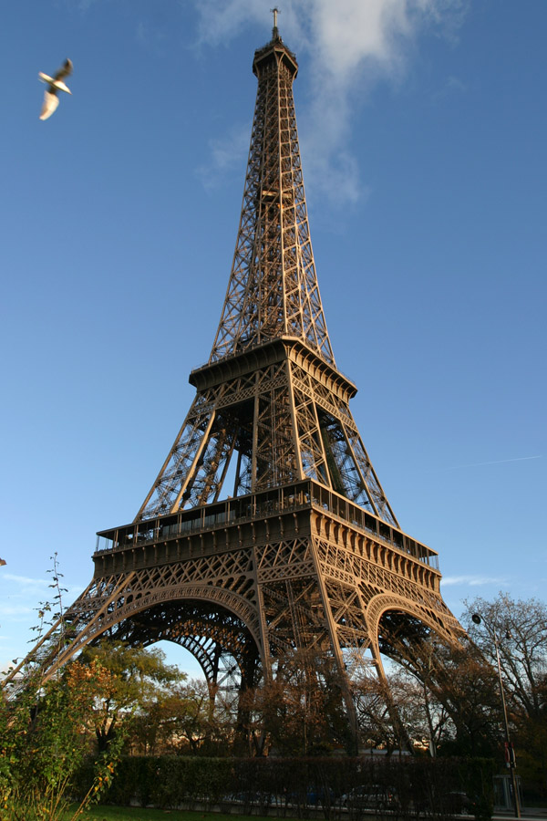 france/paris_eiffel_bird_vert