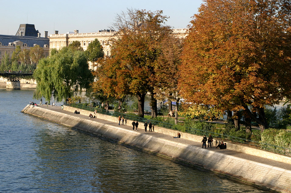 france/paris_ile_de_la_cite_trees