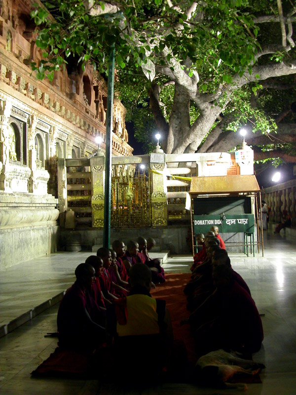 india/bodhgaya_bodhi_monks
