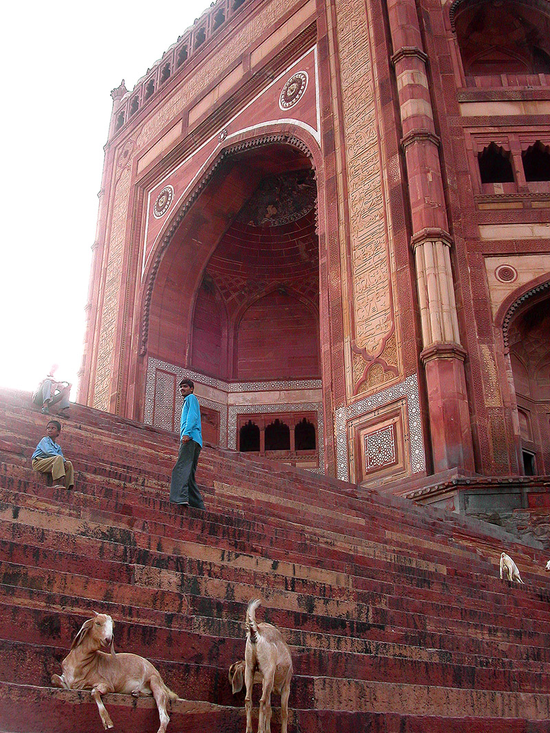 india/fatehpur_red_stairs_goats