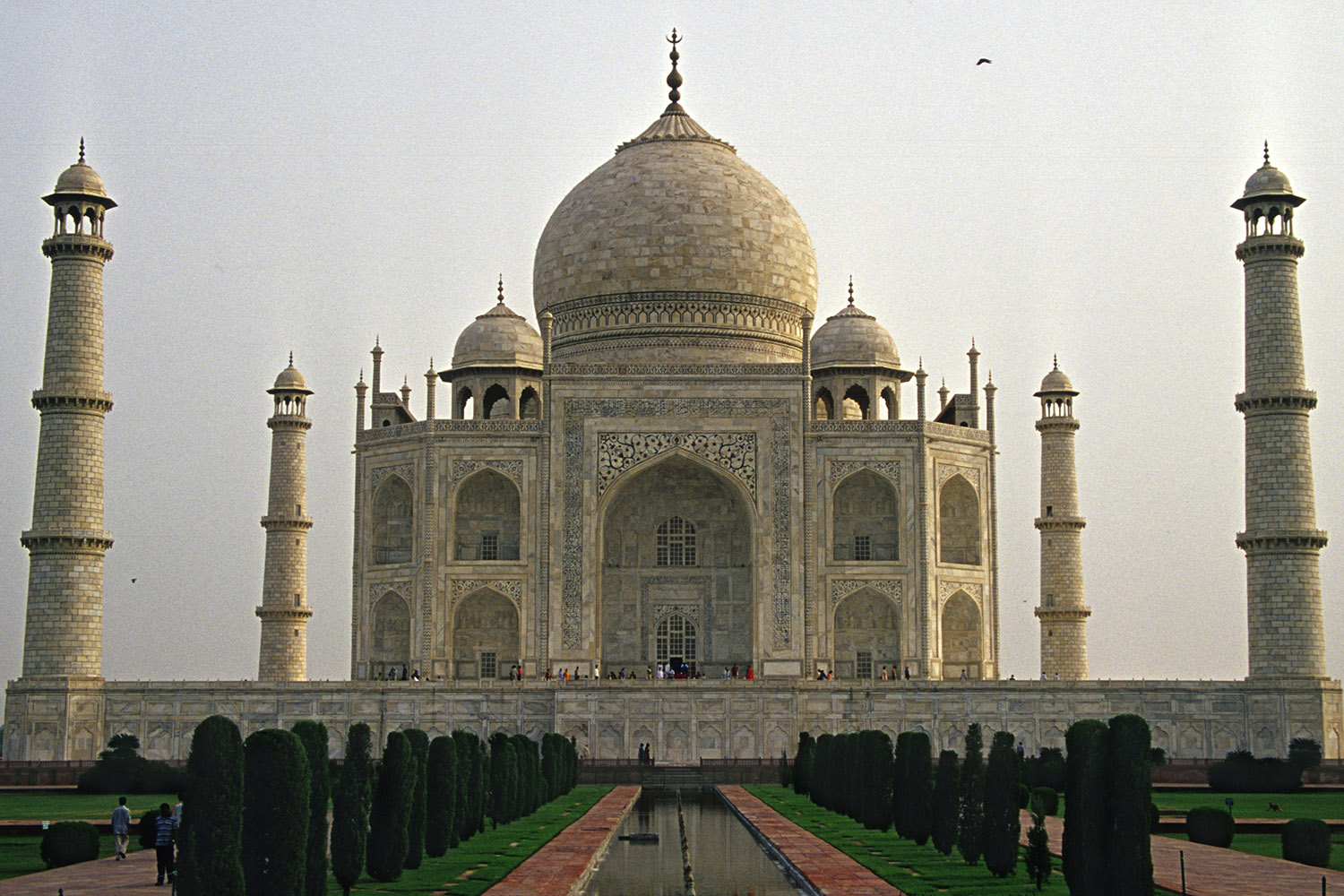 india/taj_down_slide