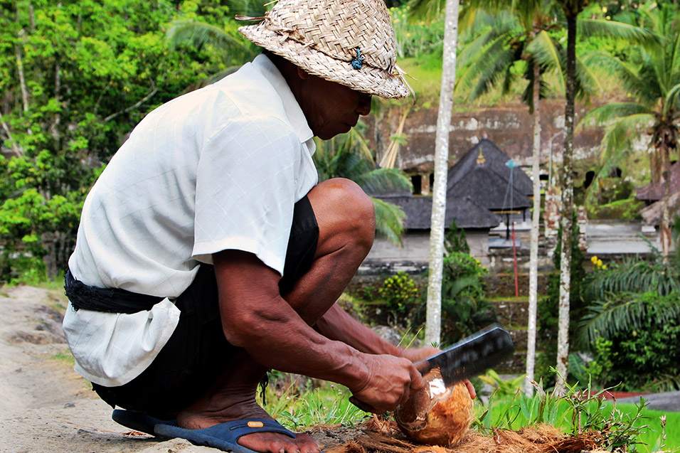 indonesia/ubud_chopping_coconuts