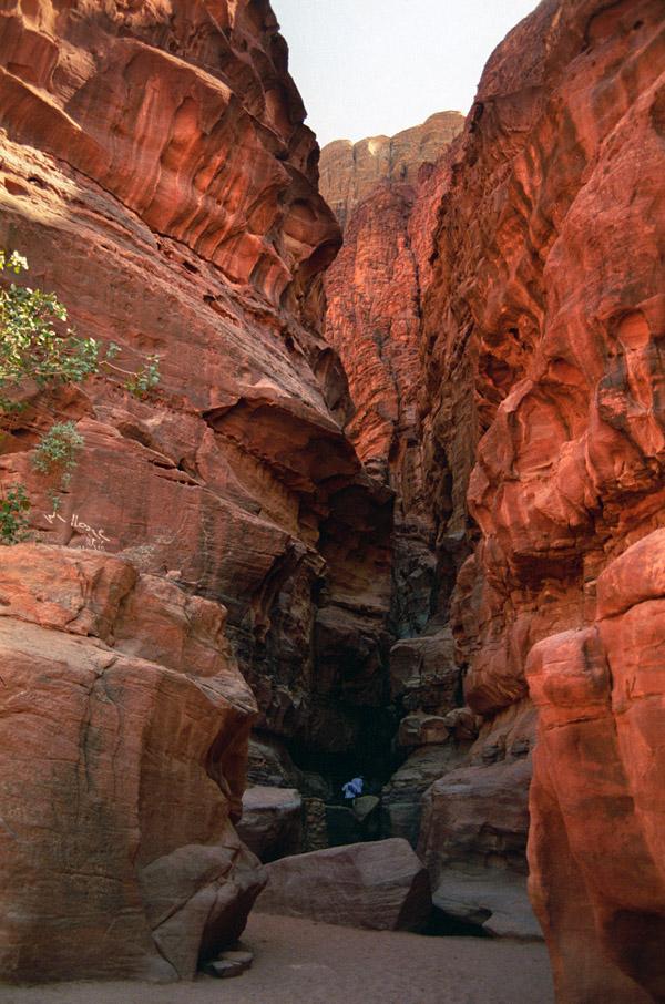 Wadi Rum Jordan  City pictures : Wadi Rum, Jordan