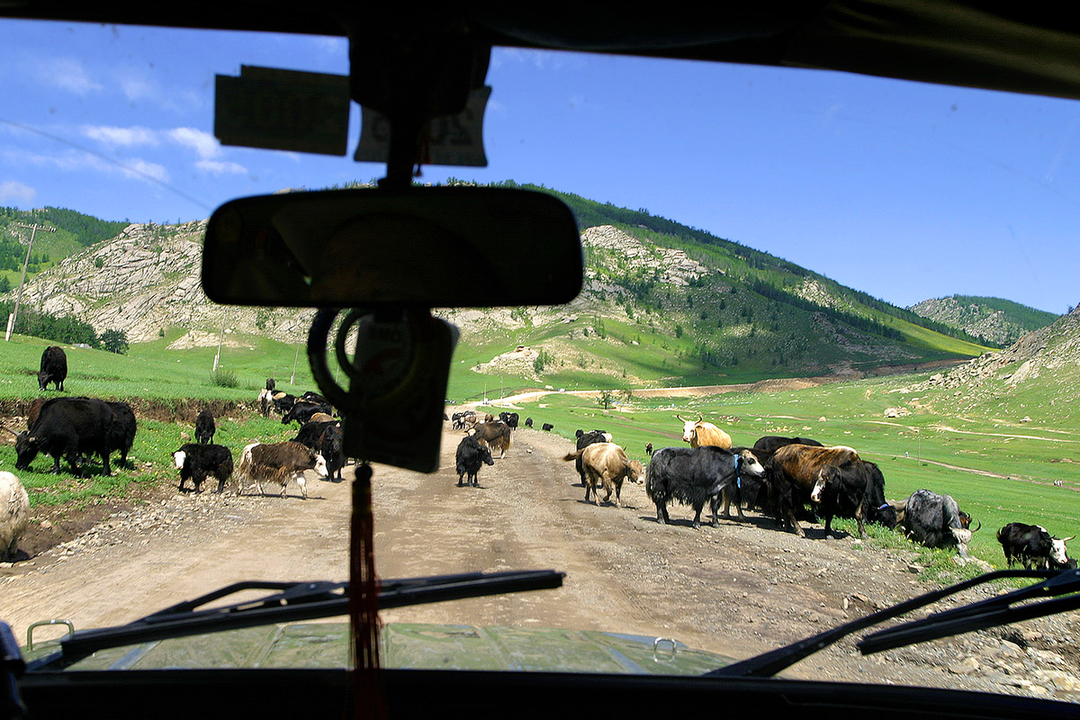 mongolia/car_inside_3