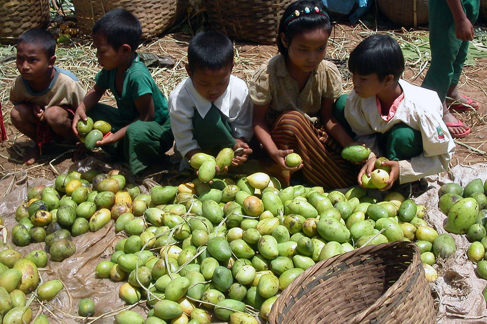 myanmar/inle_lake_man_kids_mangos
