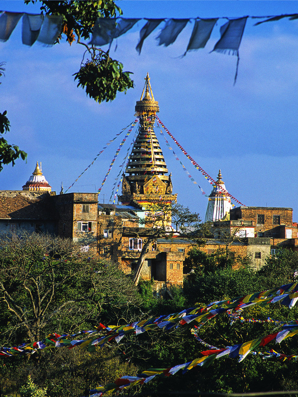 nepal/kat_monkey_temple_flags