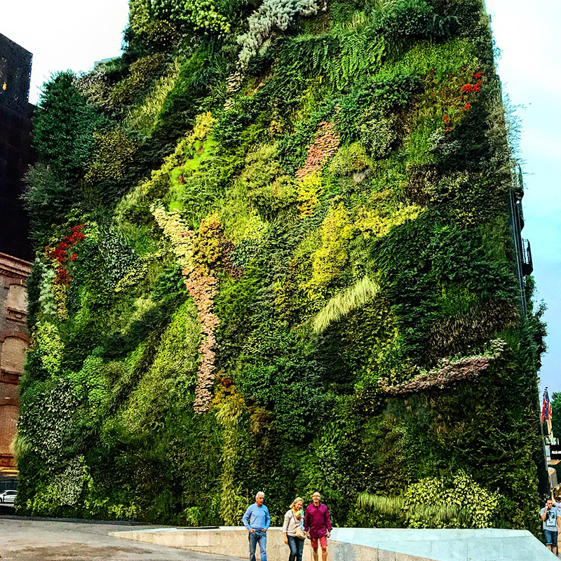 spain/2017/madrid_caixaforum_vertical_garden