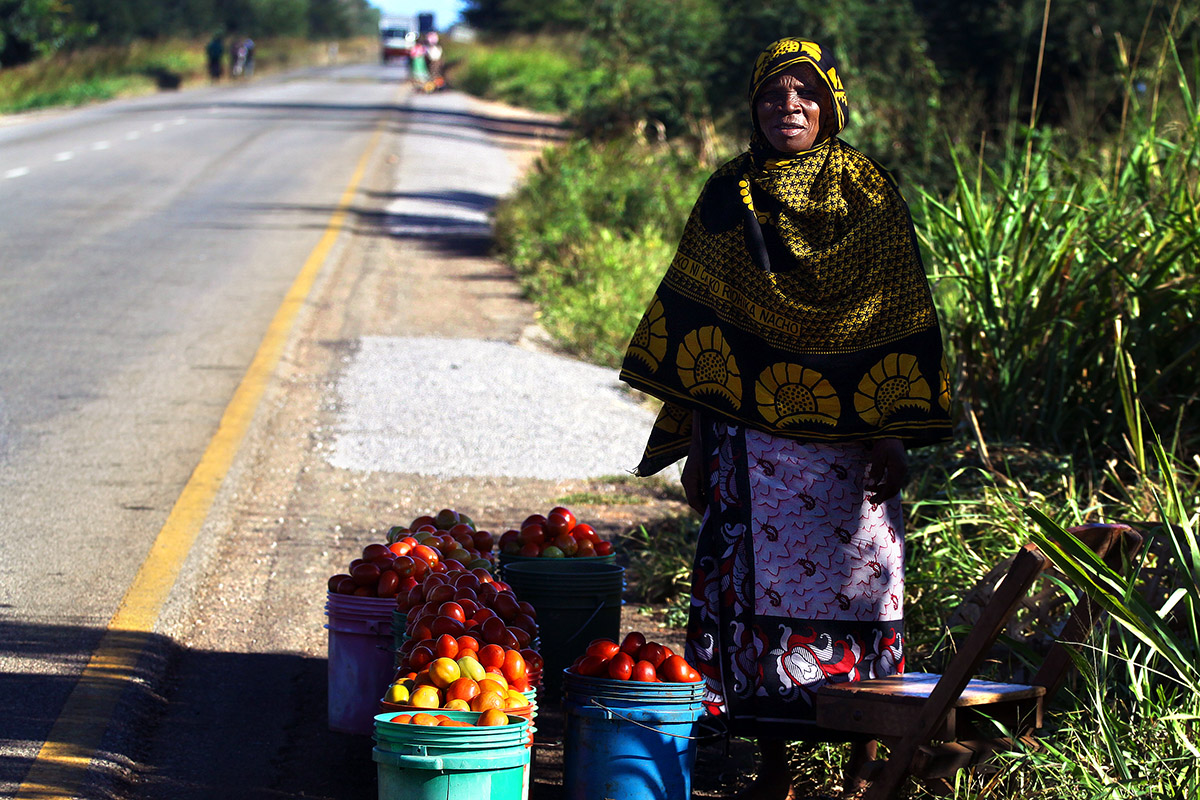 tanzania/2010/road_lady_selling_tomatos