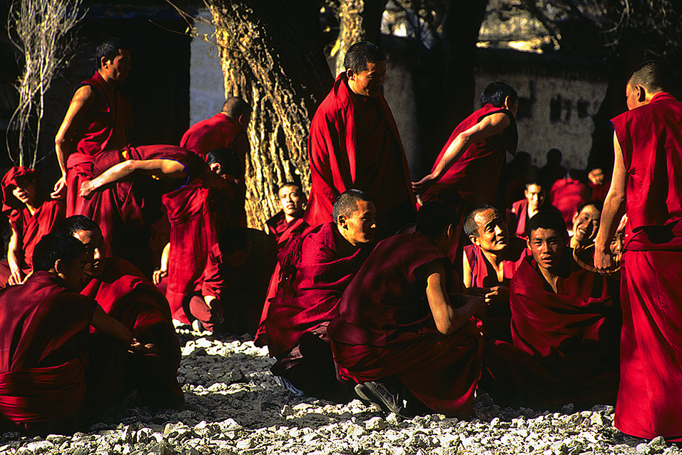 tibet/lhasa_monk_debating