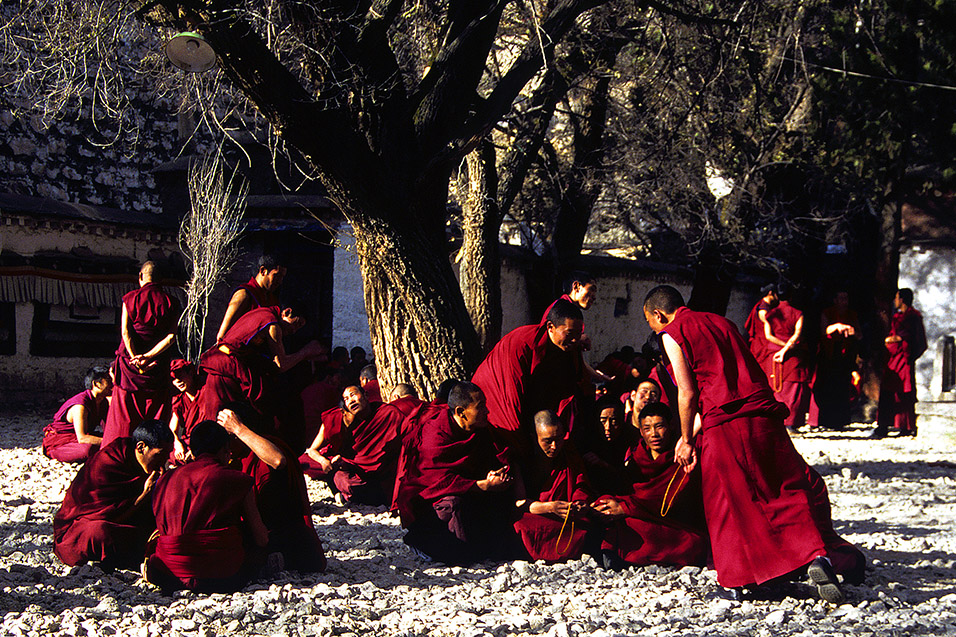 tibet/tibet_monks_debating