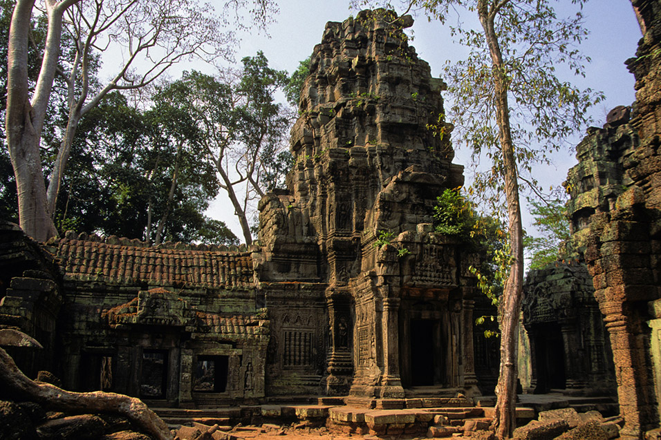 cambodia/angkor_tower_tiles_trees