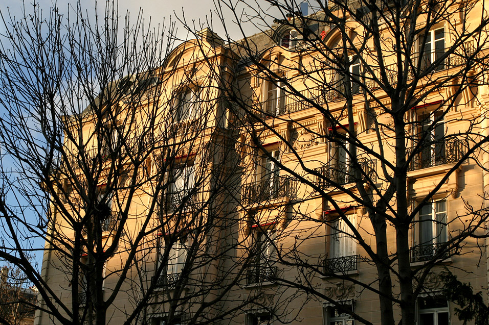 france/paris_building_gold_branches