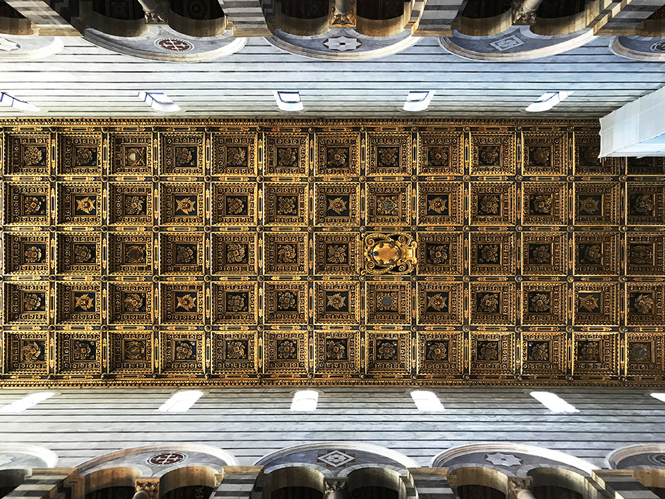 italy/2017/pisa_cathedral_ceiling